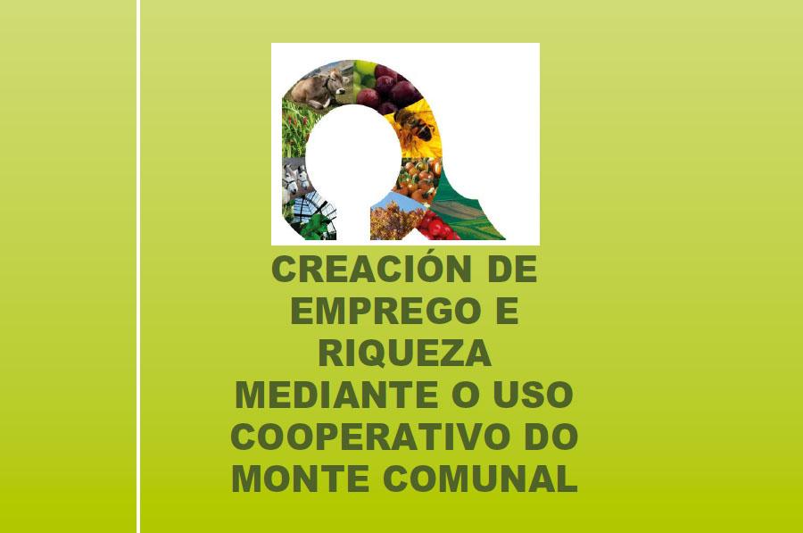 Creación de Empleo y Riqueza Mediante el Uso Cooperativo del Monte Comunal — Mazaricos