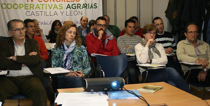 As cooperativas de Castilla y León aproban a creación dunha Organización de Produtores Lácteos