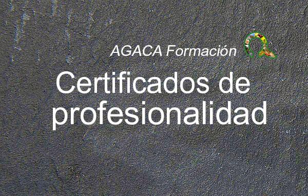 Certificado de profesionalidad – nivel 3 – en DINAMIZACIÓN COMUNITARIA