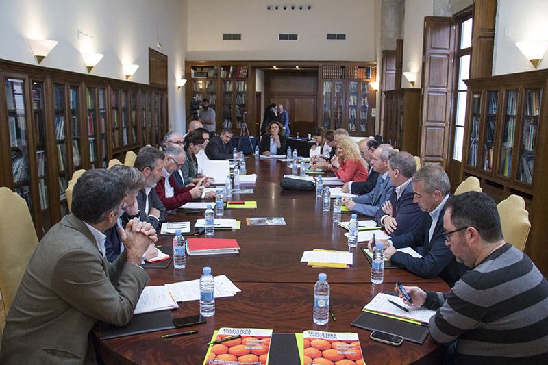 España, Francia e Italia piden compensación á UE polo acordo en cítricos con Suráfrica