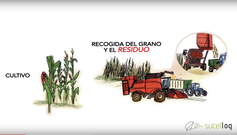 El programa Sucellog publica material formativo sobre establecimiento de centros logísticos de biomasa