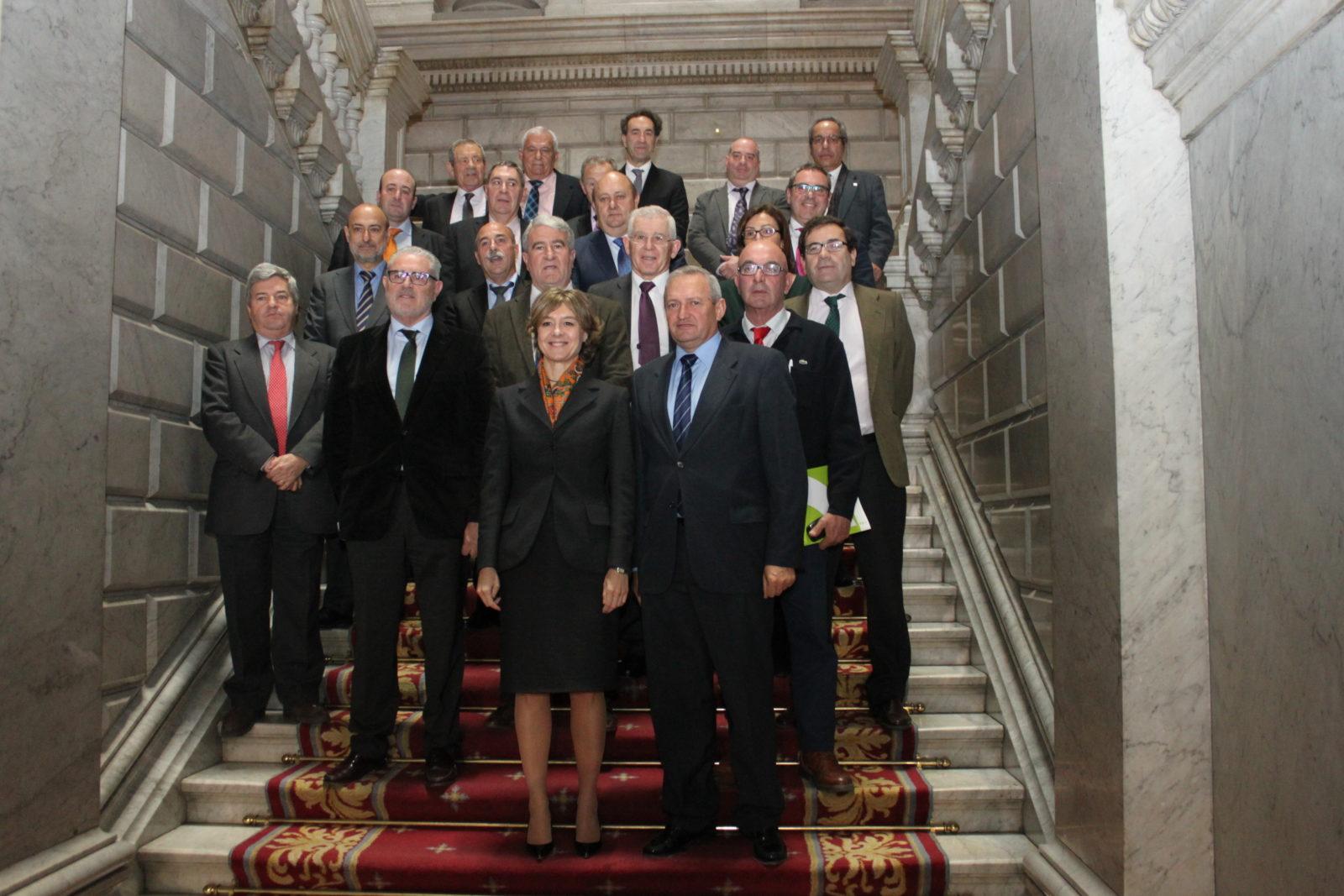 Cooperativas Agro-alimentarias de España pide una PAC que fomente la concentración de la oferta y defienda la los productores en el mercado