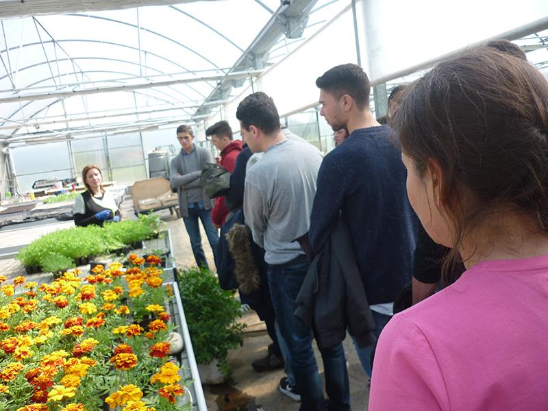Terra de Trasancos acoge un taller para estudiantes sobre salidas profesionales en el rural