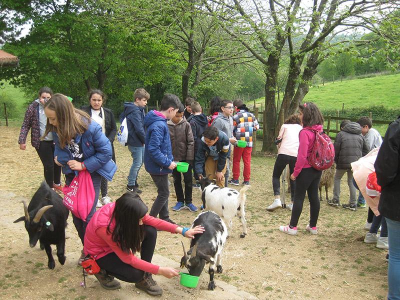 Cincuenta escolares de Lugo decubren la economía social en Xanceda