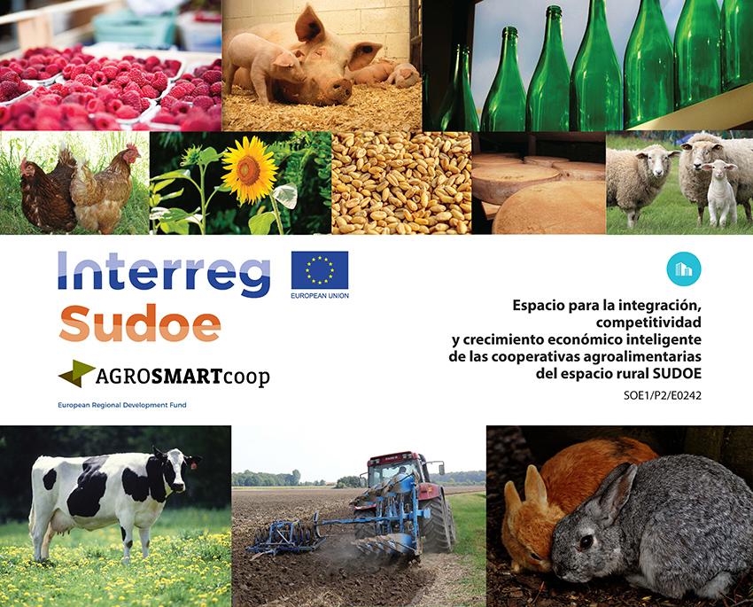 Participa en AGROSMARTcoop y mejora en integración, competitividad y crecimiento económico inteligente