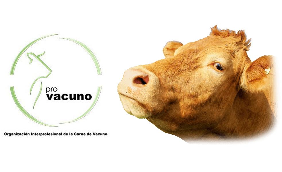 RNE 5 emite esta semana el reportaje: Vaca y buey, carne madurada