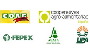 """O sector español da Froita de Óso reclama á Comisión das """"cotas do Regulamento do Veto Ruso"""""""