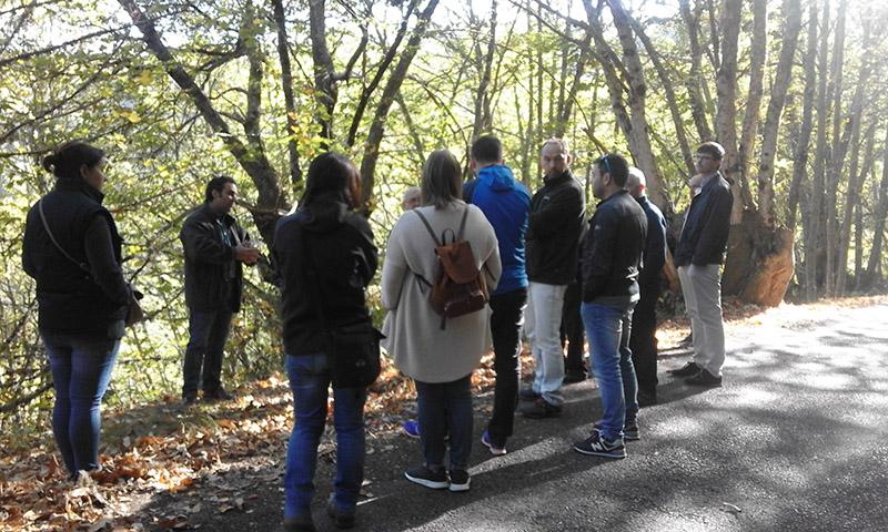 O 10 e 11 de outubro celebráronse as xornadas gratuítas sobre produción de castaña en Cervantes