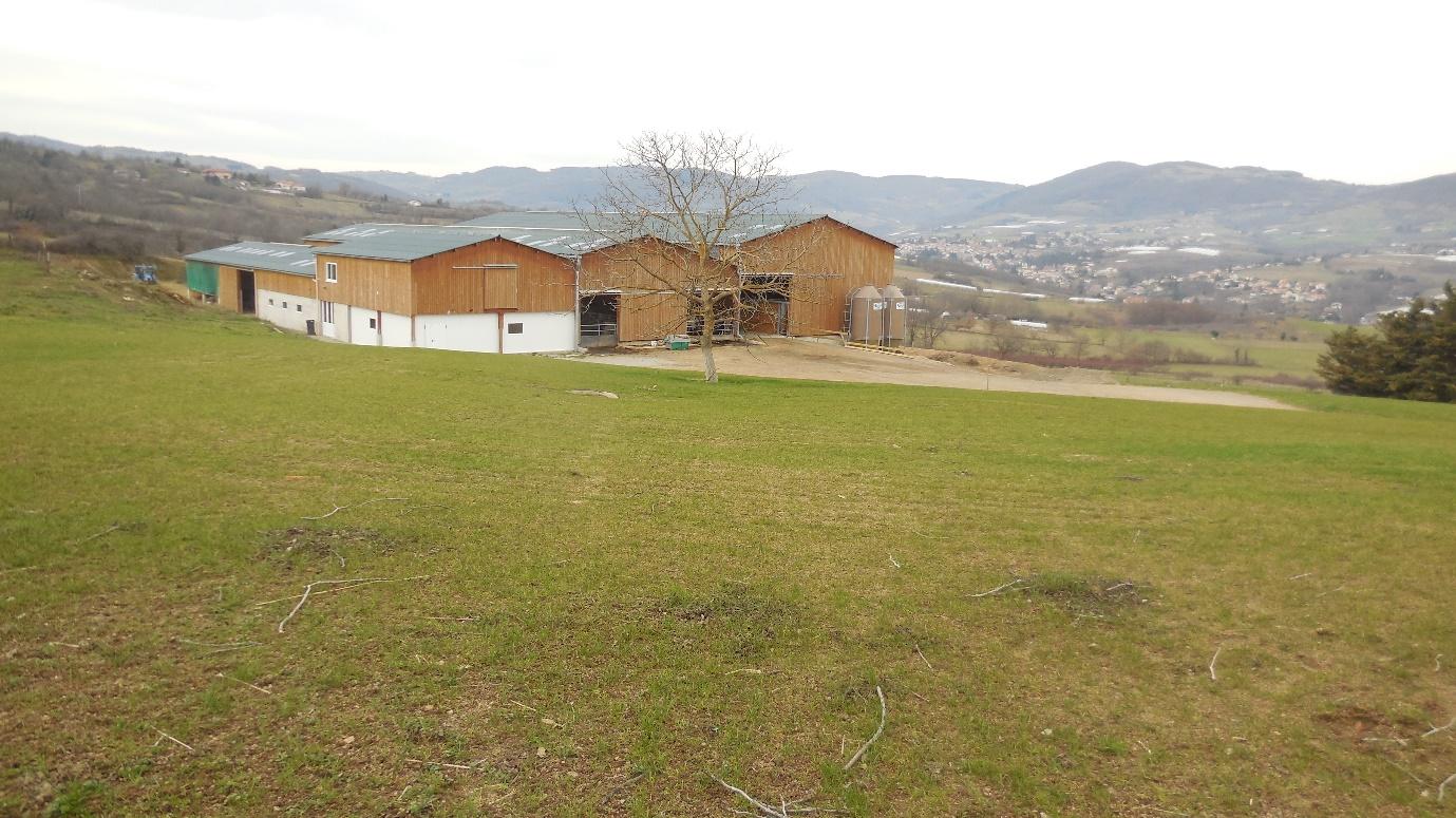 La ganadería lechera competitiva en las zonas montañosas francesas: estudio de una granja del proyecto EuroDairy