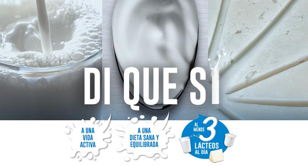 """A Inlac promove o programa""""Lácteos di que si"""""""