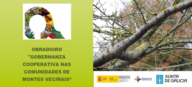 Abre a matrícula para o Obradoiro sobre Comunidades de Montes Veciñais en Mazaricos