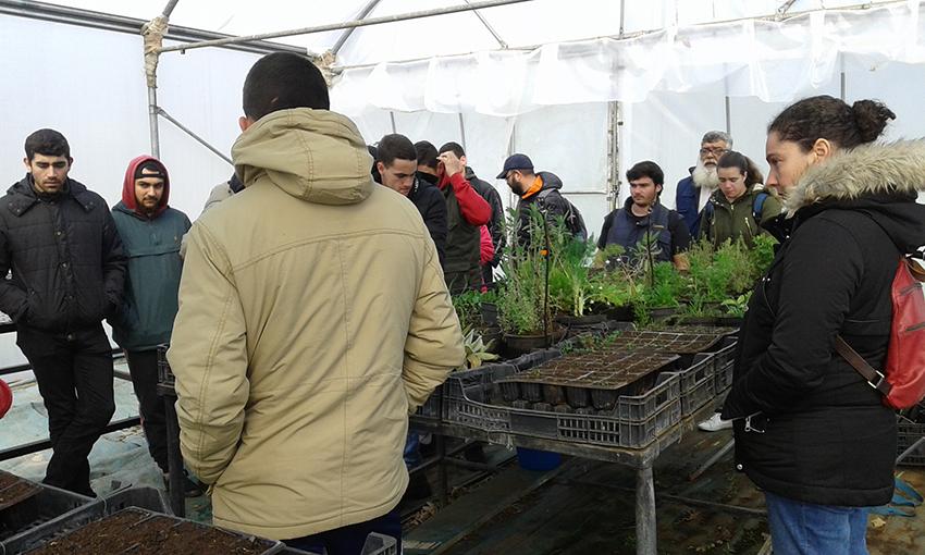 Estudantes de Pontevedra viaxan a Milhulloa para aprender cooperativismo