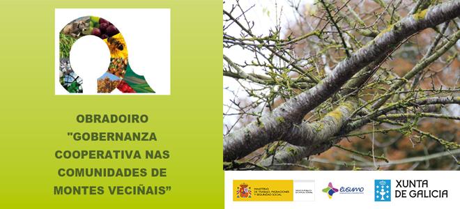 — APLAZADO HASTA NUEVO AVISO – ◄Gobernanza cooperativa en las comunidades de montes vecinales► en Vilagarcía de Arousa