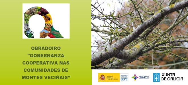 """CANCELADO: obradoiro gratuíto """"Gobernanza cooperativa nas Comunidades de Montes Veciñais"""", en Vilagarcía"""