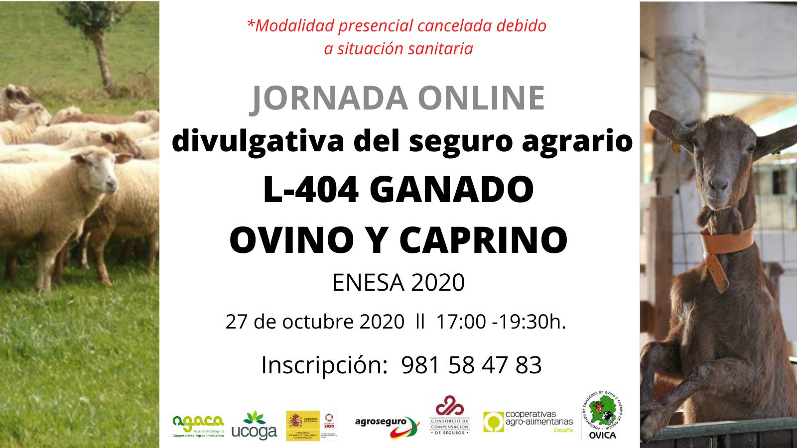 Jornada online sobre seguro agrario ovino y caprino el 27 de octubre. Inscripción abierta.