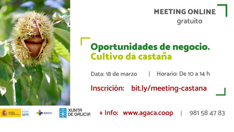 Inscríbete al «Meeting formativo: oportunidades de negocio. Cultivo de castaña» que será el 18 marzo