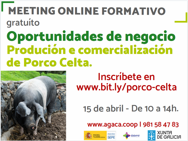 """– Meeting formativo online: """"Oportunidades de negocio. Porco celta"""""""