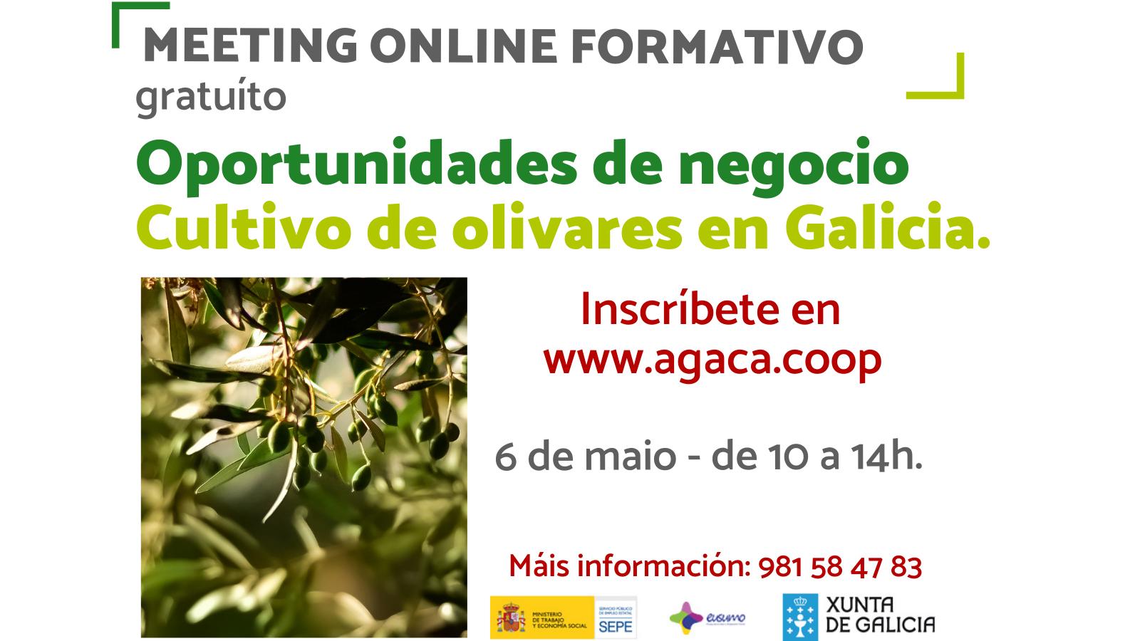 — Inscrición – Meeting formativo. Oportunidades de negocio. Cultivo de oliveirais en Galicia – 6 de maio