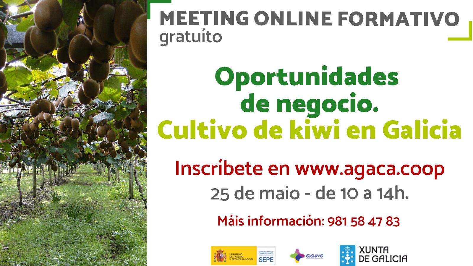 — INSCRIPCIÓN: Meeting formativo: cultivo del kiwi en Galicia – 25 mayo
