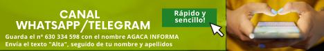 Publicidad banner 1