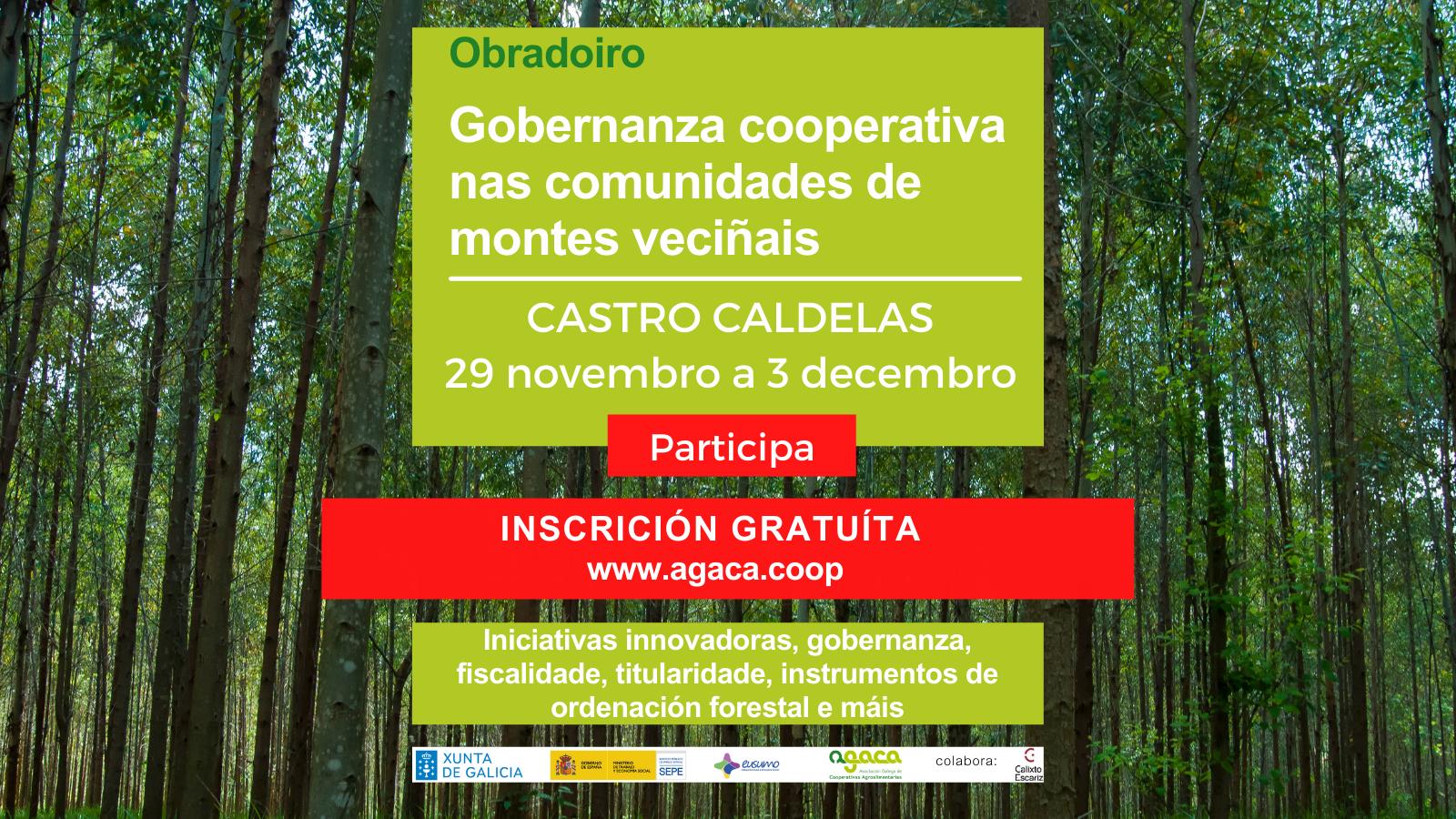 El 29 de noviembre comievza un obradoiro para Comunidades de Montes en Castro Caldelas